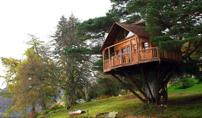 A Tree House In Balmer