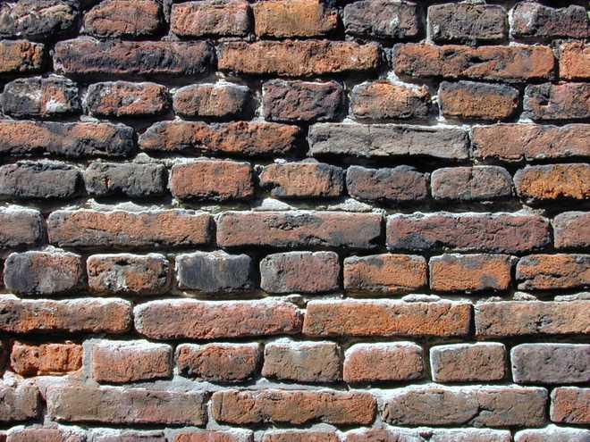 Megha Says Let's Break Walls