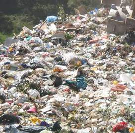 Tavisha Arora: Should India Follow Sweden's Waste Model?